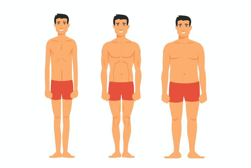 Los tres tipos de cuerpo