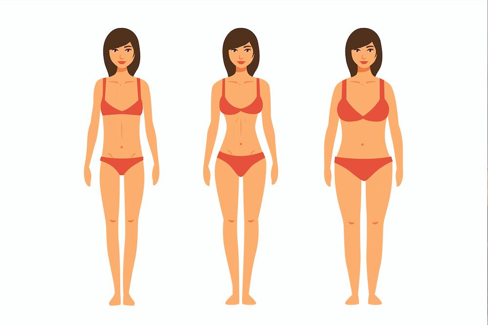 Mujeres tipo de cuerpo